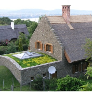 Green roof products